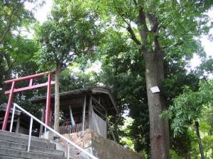 くず神さん(大阪府池田市)