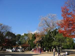 辻ヶ池公園(大阪府池田市)