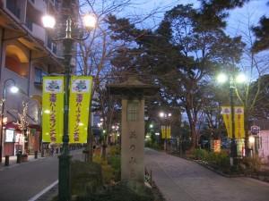 宝塚 花のみち(兵庫県宝塚市)