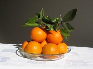 『ダイダイ』の果実